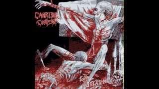 Cannibal Corpse - I Cum Blood 8-Bit