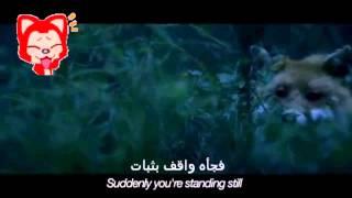 اغنيه what the fox say  مترجمه