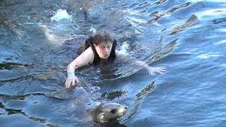 Gloria's Dolphin and Sea Lion Encounter in Key Largo, FL 11/6/13
