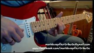 Mark Knopfler Tribute - Redbud Tree