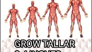 How to grow taller 2 4 inches in 1 week videos / Page 3
