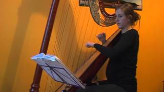 Theme from The Last of the Mohicans on Harp