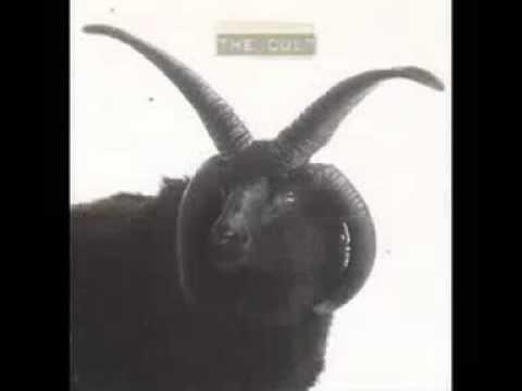 Gone de The Cult Letra y Video
