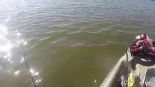 Titusville Indian River Kayak Fishing