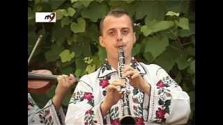 Fraţii Reuţ - Hora din Florinta (clarinet) 2012