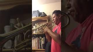 trompeta nunca es suficiente Angeles Azules