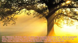 Surah Baqara aya 261-265 Mischari Raschid al-Afasi