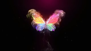 Beautiful butterfly template ||After Effects {No Text}