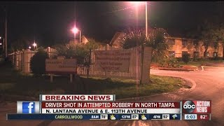 Valrico man shot during attempted armed robbery in University area in Tampa