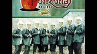 PONZOÑA MUSICAL-Pavido Navido