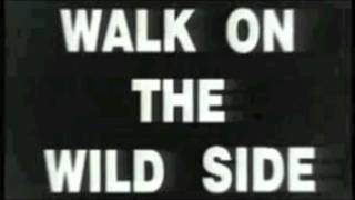 the light liars (cover lou reed ) walk on the wild side - reprise de negociations