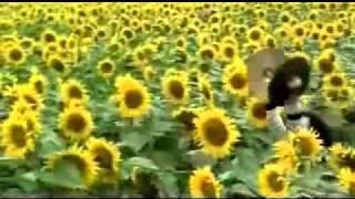 Yael Naim-I'm New Soul  Paroles+Clip