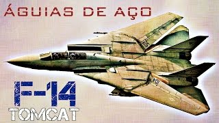Próximo Vídeo:  F-14 TOMCAT - Trailer