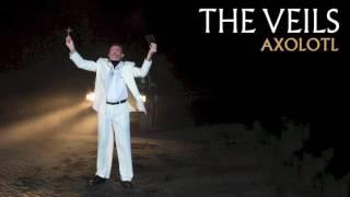 The Veils - Axolotl (Audio)