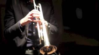 SilverT Lounge - Live Trumpet