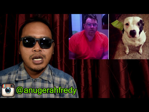 Download Video Seekor Anjing DIPERKOSA & DIBUNUH Oleh Seorang Pria! #beritagakmesti