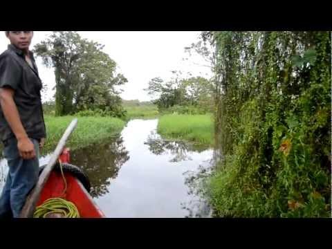 Los Guatuzos – Naturschutzgebiet im Süden Nicaraguas