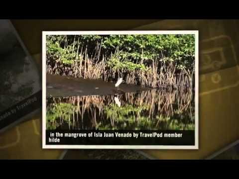 """""""Boat trip in the mangrove of Isla Juan Venado"""" Hilde's photos, Nicaragua (isla juan venado tour)"""