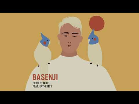 Perfect Blue de Basenji Letra y Video