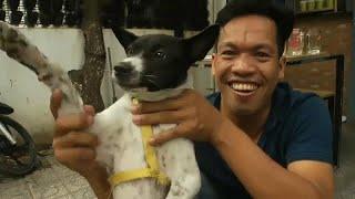 وللناس فيما يعشقون.. شاهد كيف تُسلق الكلاب وتشوى ثم تقدم على الموائد في كمبوديا ؟…