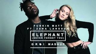 Funkin Matt ft.  Zara Larsson - Elephant (Never Forget You) [GROI MashUp]