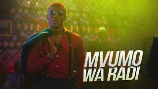 ALIKIBA - Mvumo Wa Radi (Official Video) width=