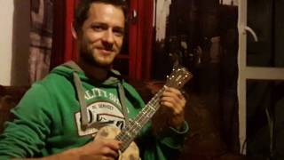 ukulele - Last of the mohicans theme