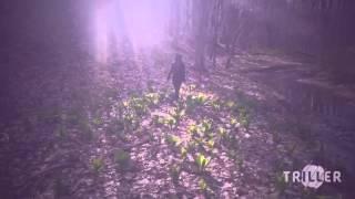 Hanging tree (Rebel remix) Music video