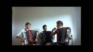 Avicii - Wake Me Up ( Crazy Accordion Trio Cover )