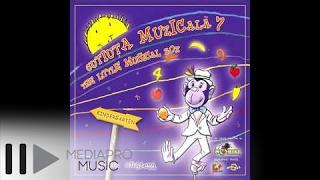 Cutiuta Muzicala 7 - Red Cherries