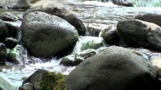 Tibetan meditation music, relaxing music, calming music, stress relief music, peaceful music, ☯2911