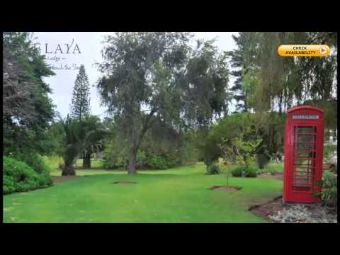 Chelaya Country Lodge | Self Catering Accommodation Somerset West | German