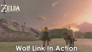 TLOZ: Breath Of The Wild - Wolf Link In Action [Wolf Link Amiibo]