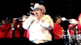 El Coyote Y Su Banda. -Amor Pajarito