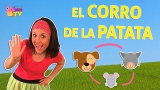AL CORRO DE LA PATATA - MUSIKIDS CON BAILE PARA CANTAR Y JUGAR