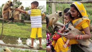 Unbreakable Bond||The relation between animals and human is unbreakable bond in India