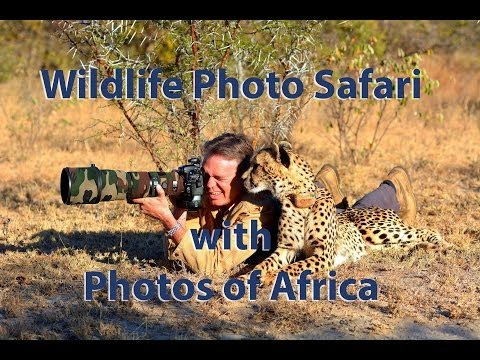 The Big Five – South Africa Travel Channel 24