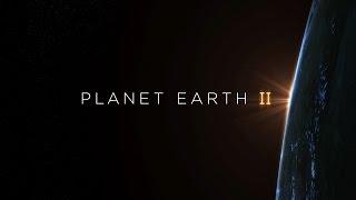 Planet Earth II Hans Zimmer Soundtrack 360° - BBC Earth