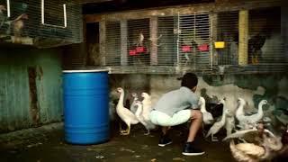آمپول زدن در حالت ایستاده Download Olesya L Chanel Videos