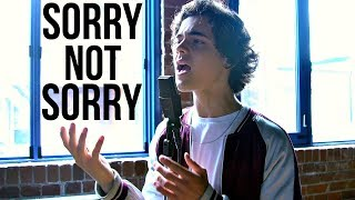 Demi Lovato - Sorry Not Sorry (Cover by Alexander Stewart)