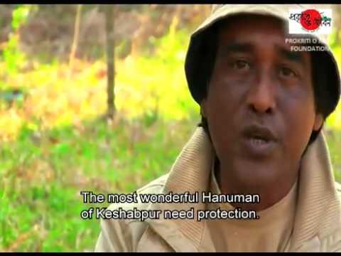 Travel Bangladesh   Discover Nature and Life 4A   travelbangladesh net