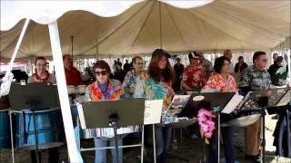 Tinpanic Steel Band --Sweet Caroline