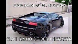 Jose Robles EL Guacho -  El Corrido de Beto Herrera (Oficial)