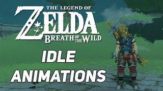 Zelda: Breath of the Wild - Idle animations