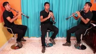 Viejitas pero bonitas (puro clarinete)