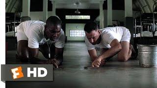 Bubba on Shrimp - Forrest Gump (3/9) Movie CLIP (1994) HD