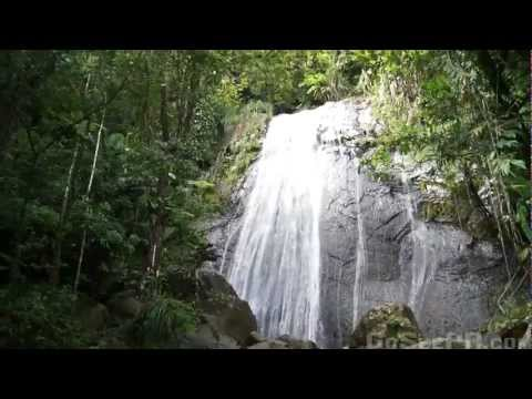 La Coca Waterfall in El Yunque National Forest Puerto Rico's Rain Forest