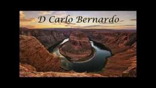 D CARLO BERNARDO-SHOWS 2013-  SE NAO TIVESSE IDO