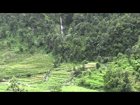 Hile Nepal