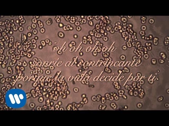 """Vídeo de la canción """"Vida"""" de Cris Méndez."""